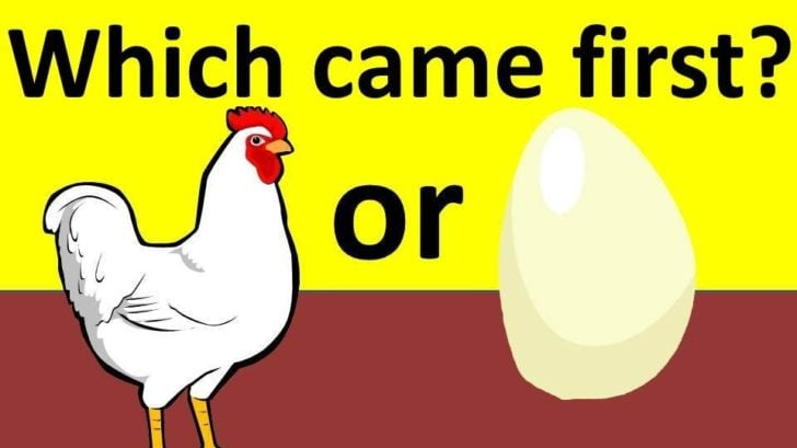 पहले मुर्गी आई या अंडा आया Who came first egg or chicken